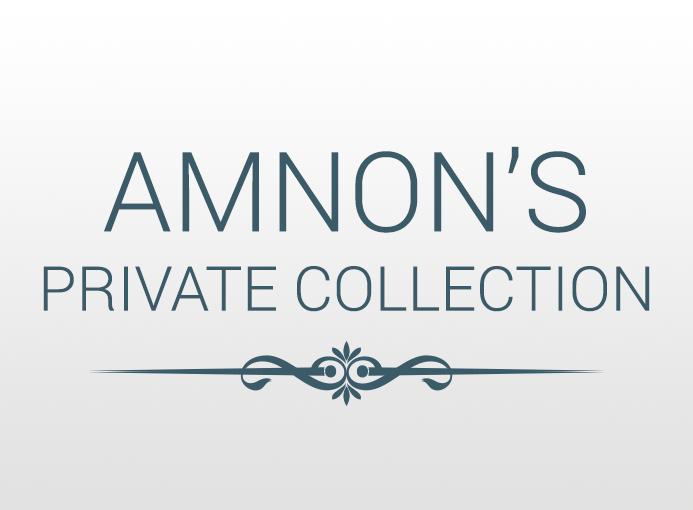 amnon collection